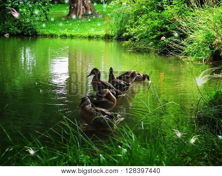 Ducks in a magical forest with fabulous creatures