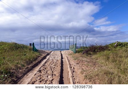 Beach Access Road And Tire Tracks On Sand Dune