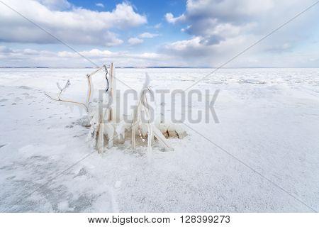 bright winter photo beautiful warm day Ukraine