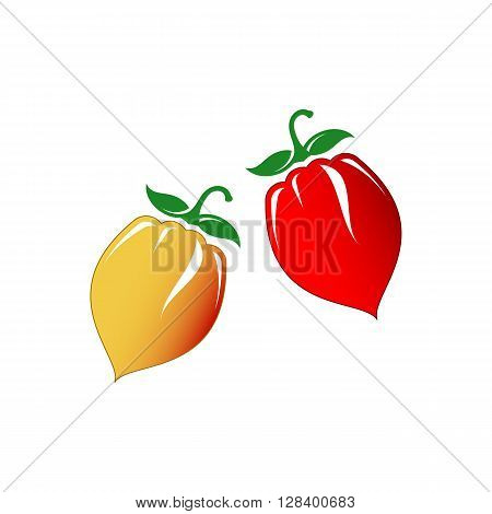 Hot chilli pepper vector set isolated on white background. Red and yellow.