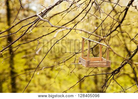 wooden feeding trough for birds on a tree on spring day
