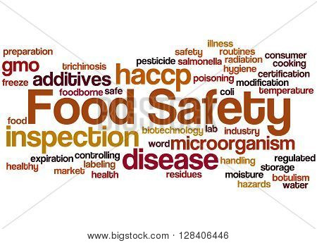 Food Safety, Word Cloud Concept 6