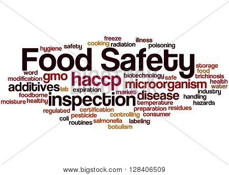 Food Safety, Word Cloud Concept 9