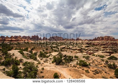 Canyonlands National Park in Utah in the USA