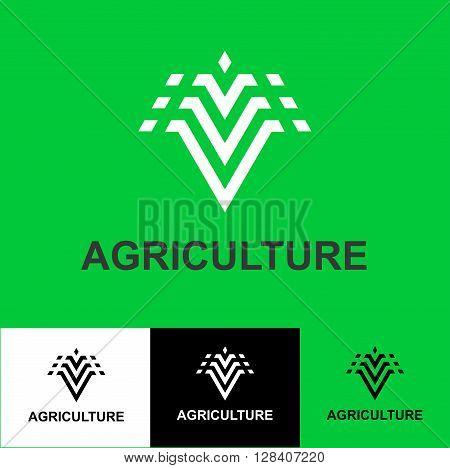 Business Icon -agriculture, vector logo concept illustration plant corn, grain. Organic logo. Ecology logo. Leafs logo. Bio logo. Nature organic logo. Agriculture logo. Vector logo template.