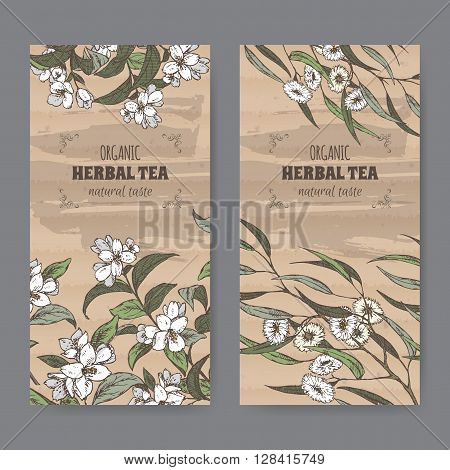 Set of two color vintage labels for jasmine and eucalyptus herbal tea. Placed on cardboard texture.