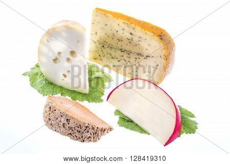 assortment of resh chesse from holland cheeses