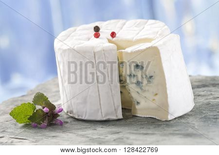 French blue  Bresse Bleu traditional frenche cheese