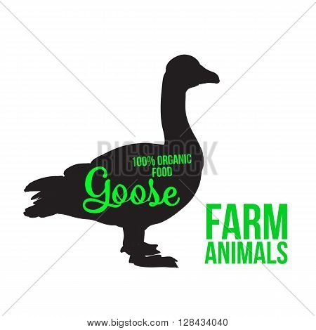 Black goose with lettering, poultry, vector illustration sketch, farm feathered animal, one color and the beautiful goose on a white background,