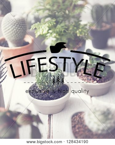 Lifestyle Simplicity Habits Life Concept