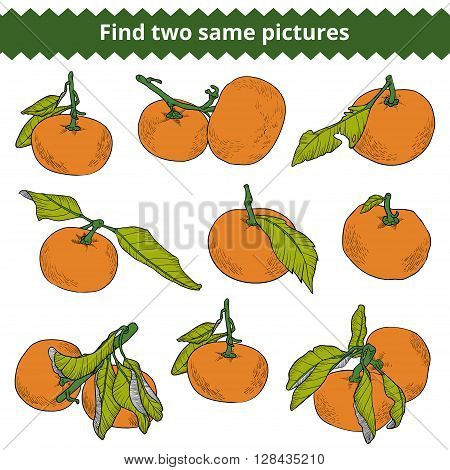 Find Two Same Pictures. Vector Color Set Of Mandarines