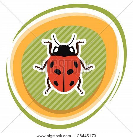 Ladybug colorful icon. Ladybug cute cartoon illustration
