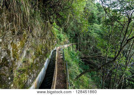 Levada from Ribeiro Frio to Portela, irrigation canal on Madeira island, Portugal