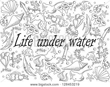 Life under water coloring book line art design vector illustration. Sea bottom separate objects. Hand drawn doodle design elements.