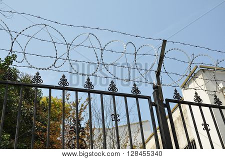 metal grid fence the with barbed  wire