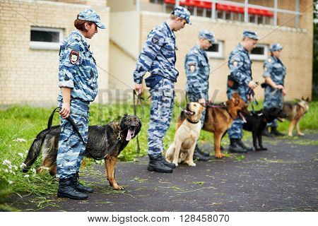 MOSCOW, RUSSIA - JUN 26, 2015: Group of policemen with dogs at courtyard of police department.