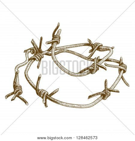 Vector antique engraving illustration of barbed wire isolated on white background