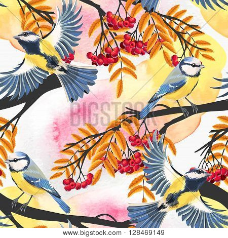Tomtit and rowan vector seamless background with watercolor blots