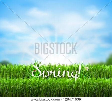 Written word Spring on the fresh green grass. Season background with blue sky