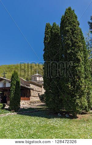 Cypresses and church in  Temski monastery St. George, Pirot Region, Republic of Serbia