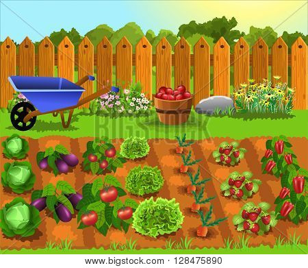 fruits and vegetables garden