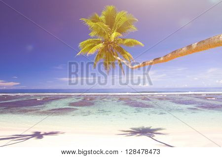 Tropical Beach Resort Summer Sea Concept