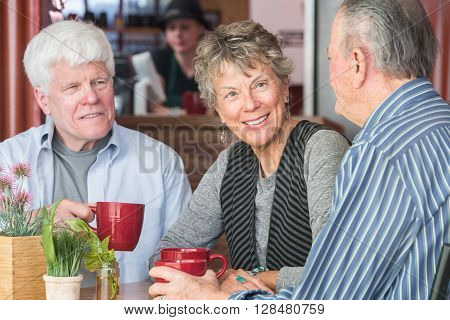 Mature Trio In Coffee House