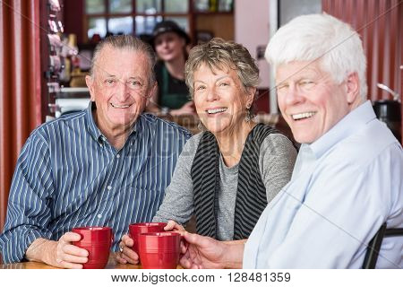 Happy Mature Group In Coffee House