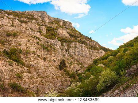 View of Val Rosandra in the Karst region