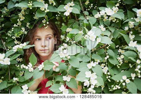 Closeup face of little girl looks out from blooming jasmine bush.