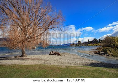 Beautiful Scenic Of Lake Wanaka In South Island New Zealand Important Landmark And Traveling Destina