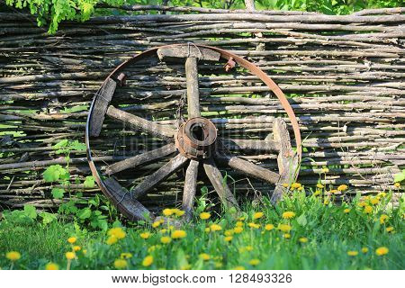 old broken wooden carriage wheel on wattled fence background