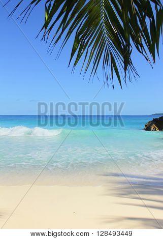 Surf Closeup Sand