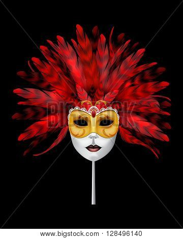 Carnival or masquerade mask with red feathers.