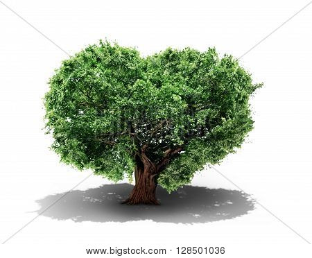 Concept of life. Big alone tree in the form of heart isolated on white background. Tree of life.