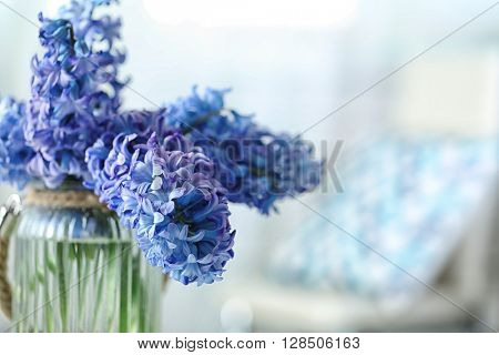 Beautiful hyacinth flowers in glass vase on light blurred background