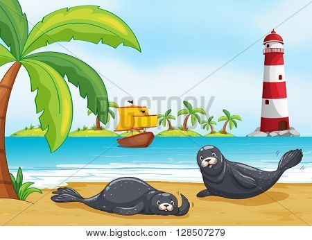 Two seals on the beach illustration