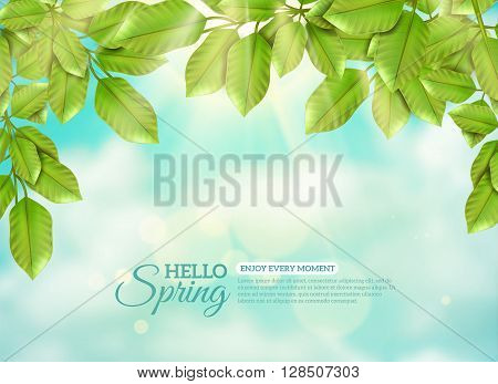 Green branches of deciduous tree in rays of spring sun at blue sky and white clouds background flat vector illustration