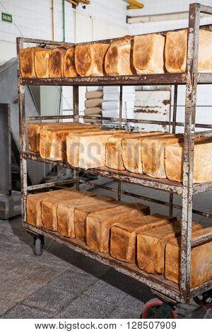 Bread Loves On Metallic Rack