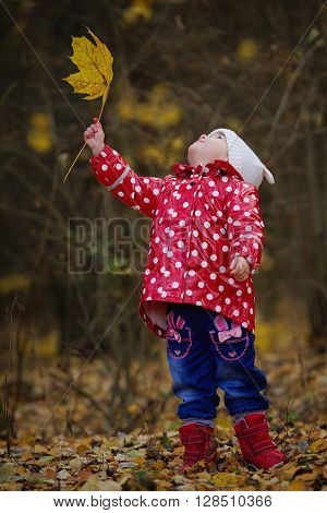 photo of little funny girl with yellow leaf