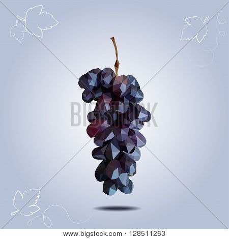 Vector polygonal dark grapes on blue background. One branch of grapes.