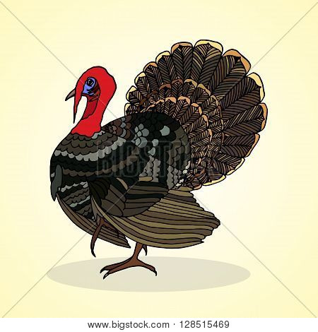 Brown turkey. Aviculture and poultry. Vector illustration.