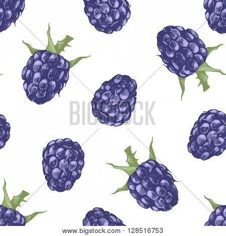 Hand drawn blackberry seamless pattern on white background