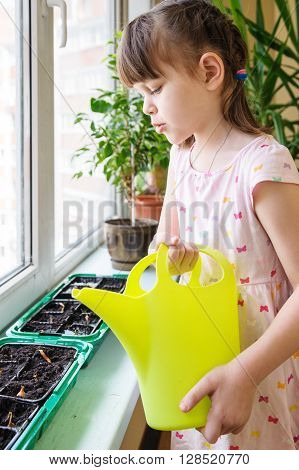 Girl with a pigtail and dress pouring from green watering onions in the green pan on the windowsill
