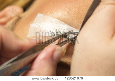 Eyelash extension procedure in beauty salon. Tweezers in hands of technician