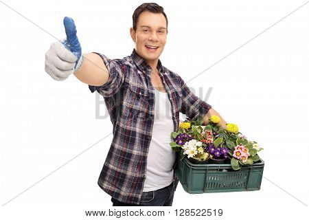 Young gardener holding a rack of flowers and giving a thumb up isolated on white background
