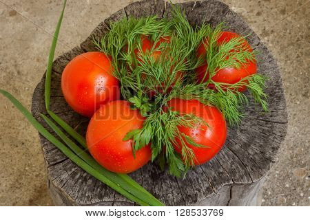 red tomatoes with greens on the stump