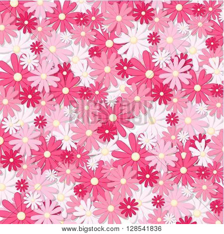 Cherry plum greeting cards. Pink beautiful background.