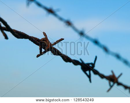 Detailed view of rusty barbed wire on blue sky background. Shallow depth of field.