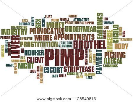 Pimp, Word Cloud Concept 5